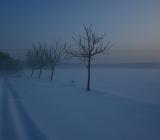 15.01.2010 Nádherná zimní příroda v Babicích - 2010