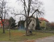 jsdho_kaceni_124