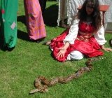 22.05.2009 Babická Veselá Náves 2.ročník