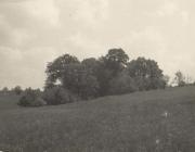 h_16891-1959