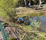 Úprava rybníčku Na Ladech
